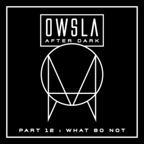 What So Not OWSLA After Dark Mix